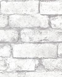 Brickwork Light Grey Exposed Brick Texture by