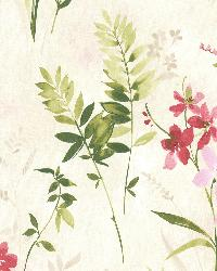 Henrietta Pink Watercolor Floral  by  Brewster Wallcovering