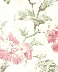 Juliana Rose Vintage Floral by