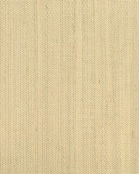 Ruslan Champagne Grasscloth by