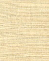 Klaudia Champagne Foil Grasscloth by