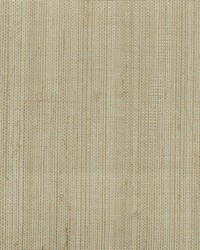 Ruslan Grey Grasscloth by