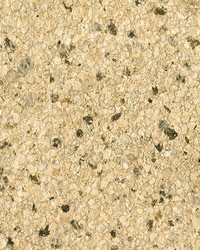 Petra Beige Mica Chip by