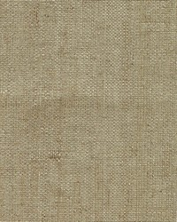 Ruslan Taupe Grasscloth by
