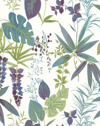 Descano Exotic Plum Botanical Wallpaper by