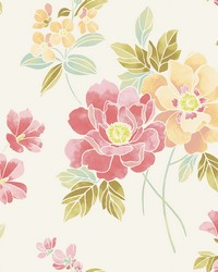 Claressa Apricot Floral Wallpaper by