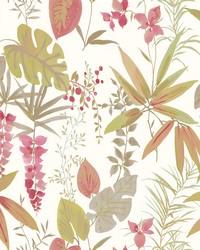 Descano Flower Pink Botanical Wallpaper by