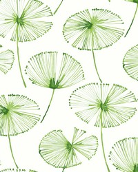 Paradise Green Fronds Wallpaper by