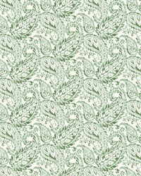 Adrian Green Paisley by