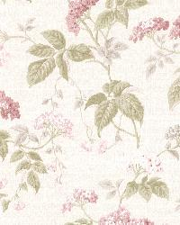 Emily Rose Blossom Trail by  Brewster Wallcovering
