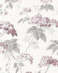 Emily Purple Blossom Trail by  Brewster Wallcovering