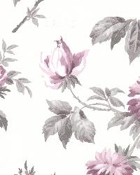 Charlotte Purple Vintage Rose Toss by  Brewster Wallcovering