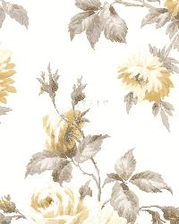 Charlotte Yellow Vintage Rose Toss by  Brewster Wallcovering