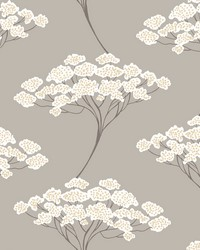 Banyan Taupe Tree Wallpaper by