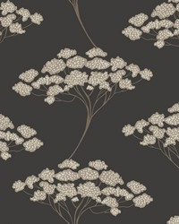 Banyan Black Tree Wallpaper by