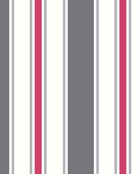 Sunshine Stripe Grey Stripe by