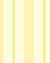 Sunshine Stripe Yellow Stripe by