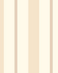 Sunshine Stripe Taupe Stripe by