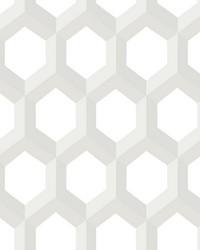 Hex Neutral Geometric Wallpaper by
