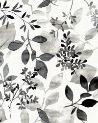 Gossamer Black Botanical Wallpaper by