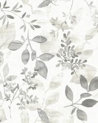 Gossamer Grey Botanical Wallpaper by