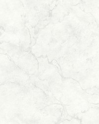 Innuendo White Marble Wallpaper by