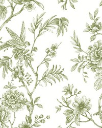 Jessamine Green Floral Trail Wallpaper by
