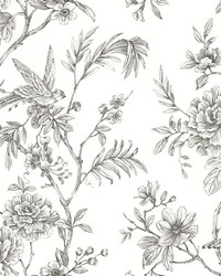 Jessamine Grey Floral Trail Wallpaper by