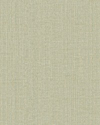 Beiene Light Green Weave Wallpaper by