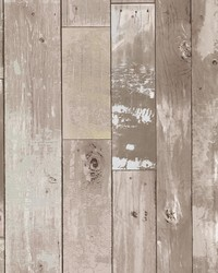 Harbored Neutral Distressed Wood Panel Wallpaper by