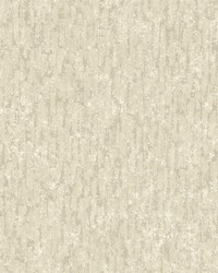 Cole Neutral Winter Plain Wallpaper by