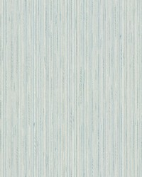 Salois Light Blue Texture Wallpaper by