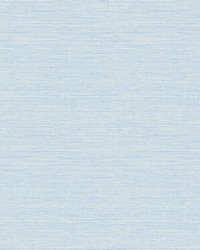 Bluestem Blue Grasscloth Wallpaper by
