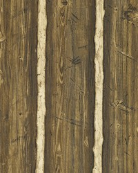 Hodgenville Brown Pine Wood Wallpaper by
