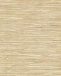 Cate Neutral Vinyl Grasscloth Wallpaper by
