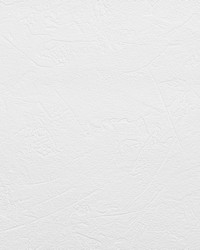 Brier Paintable Plaster Texture Wallpaper by