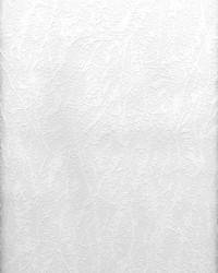 Freese Paintable Plaster Texture Wallpaper by