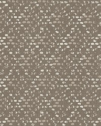 Blissful Brown Harlequin Wallpaper by