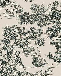 Limoges Black Toile by