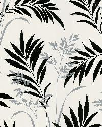 Bali Hai White Foliage by  Brewster Wallcovering