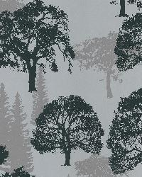Forest Silver Trees by  Brewster Wallcovering