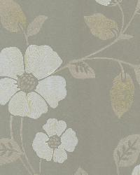 Poppy Taupe Modern Floral by  Brewster Wallcovering