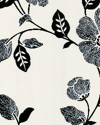 Poppy White Modern Floral by  Brewster Wallcovering