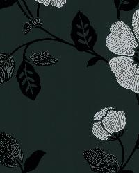 Poppy Black Modern Floral by  Brewster Wallcovering