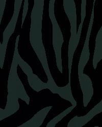 Zebra Chic Black Zebra Stripe by