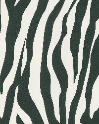 Zebra Chic White Zebra Stripe by
