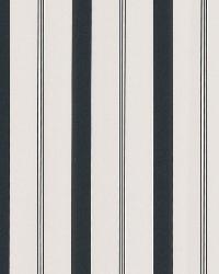 Stripes Black Varied Stripe by