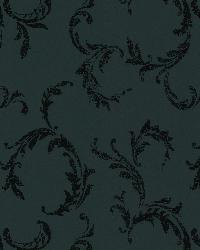 Plume Black Scroll by  Brewster Wallcovering