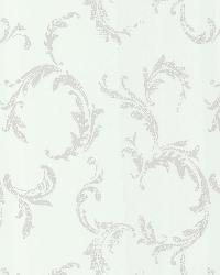 Plume Champagne Scroll by  Brewster Wallcovering