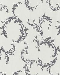 Plume Grey Scroll by  Brewster Wallcovering